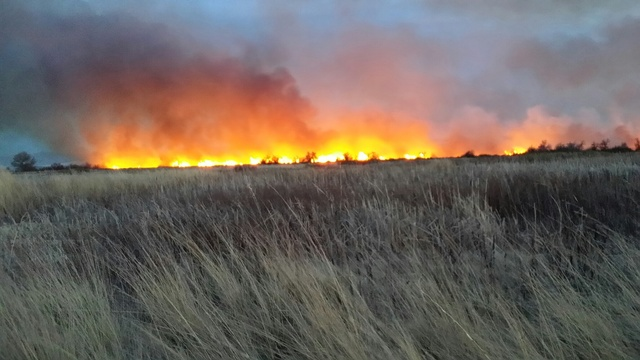Dry Conditions Spark Brush Fires