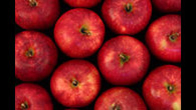 WSU Names New Apple Variety