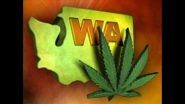 WA State Seeks to Intervene in Lawsuits Over Pot Bans