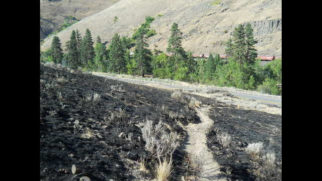Suspect Arrested for Allegedly Starting Big Horn Fire in Yakima Canyon