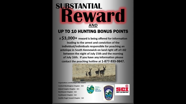 Reward For Information On Antelope Poached in South Kennewick