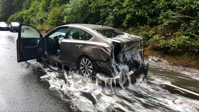 Truck carrying eels rolls over on Hwy 101, covering roadway with slime
