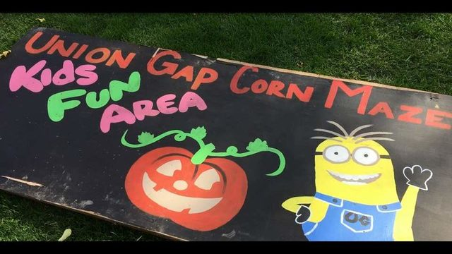 The Union Gap Corn Maze and Pumpkin Patch is back